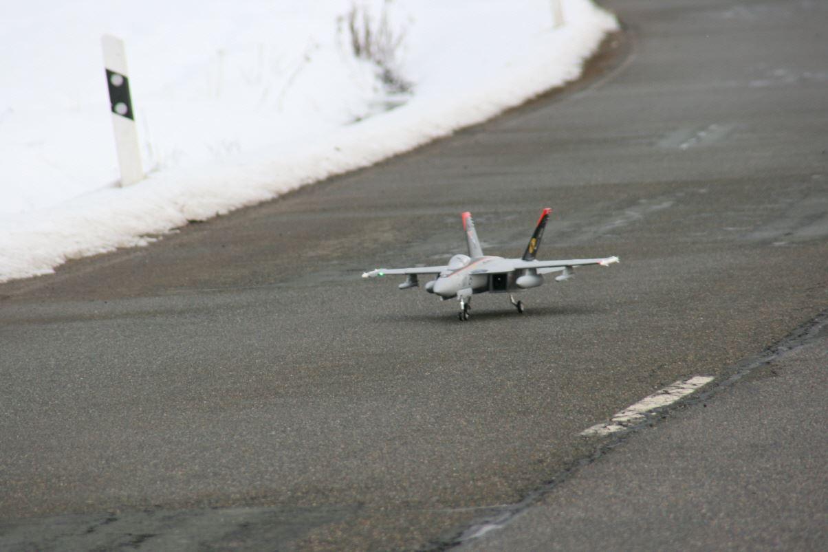 Hobby modelflugzeug for Graskarpfen im koiteich